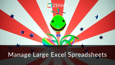 Manage Large Excel Spreadsheets