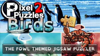 Pixel Puzzles 2: Birds