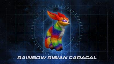 Rainbow Risian Caracal