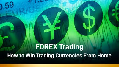 FOREX Trading - How to Win Trading Currencies From Home