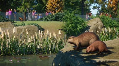 screenshot-Planet Zoo_ North America Animal Pack-11