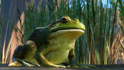 screenshot-Planet Zoo_ North America Animal Pack-12