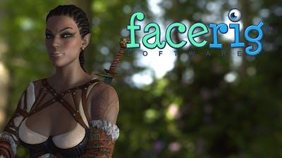 FaceRig Warriors DLC