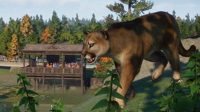 screenshot-Planet Zoo_ North America Animal Pack-14