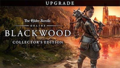 The Elder Scrolls® Online: Blackwood Collectors Edition Upgrade